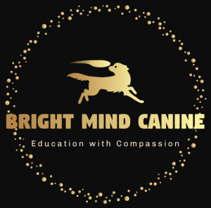 Bright Mind Canine Services